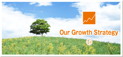 Our Growth Strategy